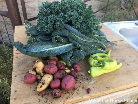 greens and vegetables